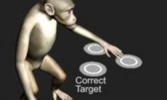 Мавп навчили керувати комп`ютером силою думки
