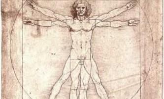 Виявлена частина тіла, яка поставила в тупик леонардо да вінчі