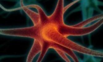 Одна старіюча клітина мозку тягне за собою інші