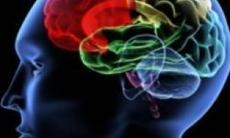 Пухлина головного мозку: типи новоутворень
