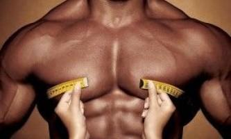 Основні стимули м`язової гіпертрофії