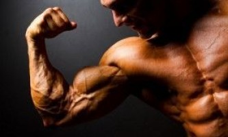 Чому у тебе не ростуть м`язи?