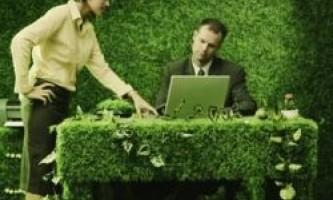 Чому зелений колір заспокоює