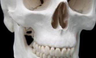 Чому зуби не вважаються кістками?