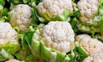 Корисні властивості цвітної капусти