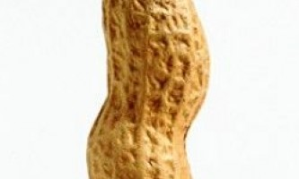 Користь і шкода арахісу