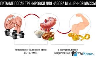 Раціон харчування майка ментцера в бодібілдингу