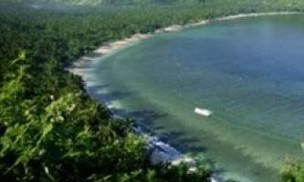 Рослинність на узбережжі допомагає врятуватися від цунамі