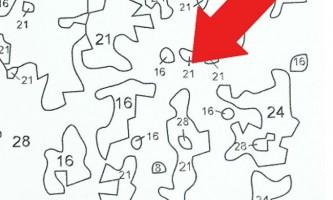 Малюємо картини за номерами на полотні або на картоні