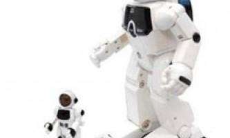 Роботи - скелелази, бібліотекарі, спортсмени