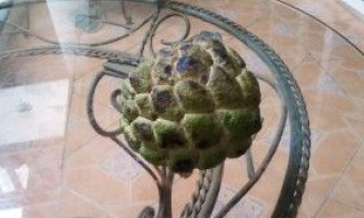 Цукрове яблуко (аннона луската)