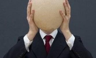 Найбільше яйце у світі виставлено на аукціон