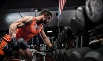 Найефективніші вправи для м`язів у бодібілдингу