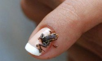 Найменші речі в світі