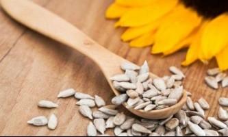 Насіння соняшнику: користь і шкода