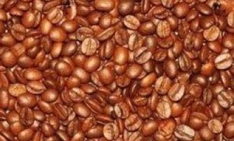 Чи зможете ви знайти 6 прихованих об`єктів серед кавових зерен