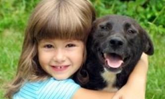 Собака - найкращий друг дитини в боротьбі з хворобами