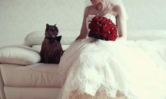 Весільні рекорди книги гиннесса