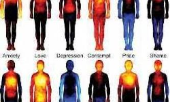 Вчені склали карту, яка показує, де ми відчуваємо емоції