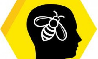 Вчимося не старіти у бджіл