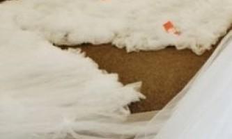 Вкрасти весільну сукню і довести любов