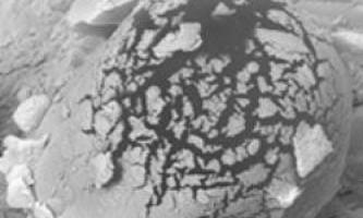 У марсіанському метеориті знайшли останки стародавнього життя