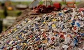 У швеции не вистачає сміття