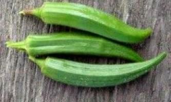 Вирощування бамии з насіння